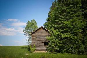 gammal trä liten stuga förutom gröna träd foto