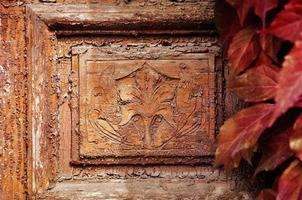 detalj av vintage dörr med blad av vilda druvor foto