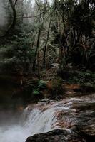 vattenfall omgiven av träd