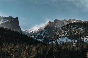 tittar upp på berg och träd foto