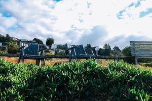 träbänk på gräs med molnig blå himmel foto