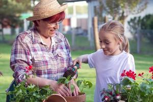 trädgårdsskötselstid foto