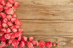 röda rosor på träbakgrund foto