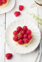 ostkaka med färska hallon på en vit platta. efterrätt. foto