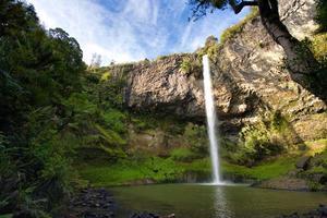 brudslöja faller Nya Zeeland foto