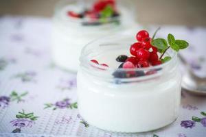 hemlagad yoghurt foto