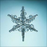 naturlig kristall snöflinga makro foto