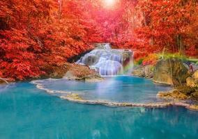 underbart vattenfall med regnbågar i djup skog vid nationella par