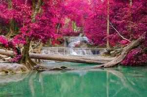 vattenfall i djup skog vid erawan vattenfall nationalpark,