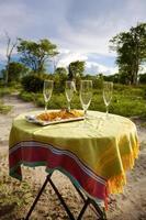 safari champagne i moremi spelreserv. namibia foto