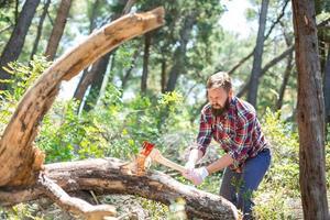 porträtt av en attraktiv ung skogsarbetare foto