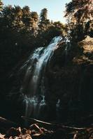 vattenfall i skogen på dagtid foto