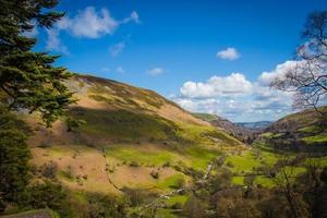 grönt bergsgräs under blå himmel foto