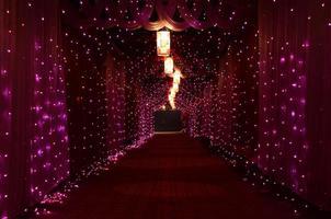 lila stränglampor foto
