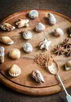 lyxiga chokladgodisar i form av skaldjur foto