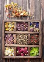 torkade medicinska örter och blommor i en trälåda foto