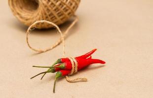 kryddor blandning urval. foto