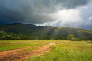 grön kulle i ranong foto