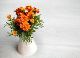 ringblommor blommor i vas på grå bakgrund