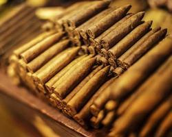 cigarrer foto