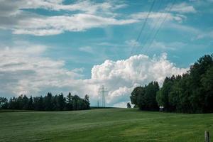 grönt fält och träd foto
