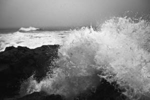 havsvågor på dagtid foto