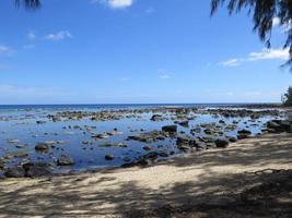 stenig strand under dagen
