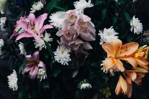 närbild av blommor
