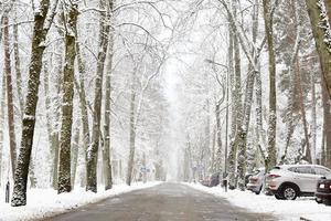 vinterlig snöig väg