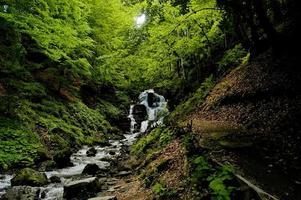 magisk skog med vattenfall foto