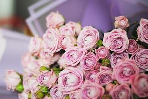 bukett med glada yo yo rosor, små rosa rosor