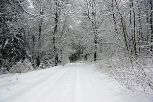 snöigt landskap i Tyskland