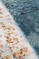 bruna fallna löv på trappor bredvid vattenkroppen foto