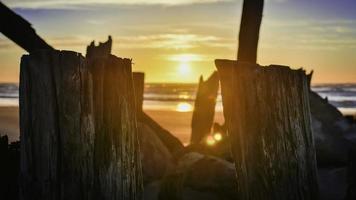 trä stockar på stranden vid solnedgången