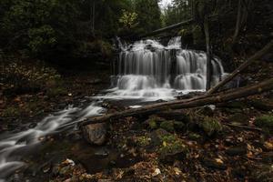 vattenfall i en mörk skog