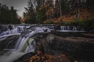 flödande flod i en skog foto