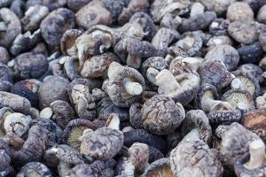 torkade shiitakesvampar foto