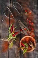 Chili pulver foto