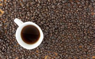 kaffekorn och kopp foto