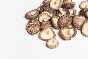 shiitake svamp foto