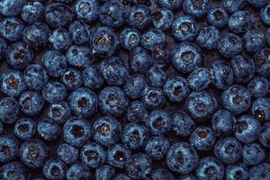 våta blåbär på svart skiffer foto