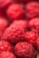 närbild av färsk, organisk respberry med röd bärbakgrund foto