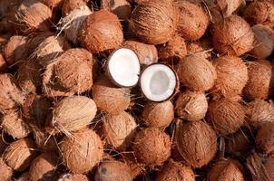 många kokosnötter hela och delas upp i hälften. Kerala Indien foto