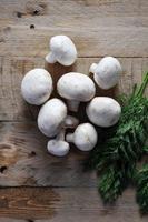färska hela vita svampar med dill foto