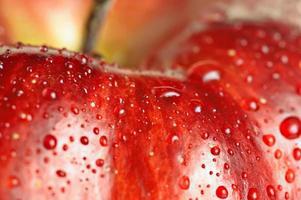 vacker närbild äpple foto