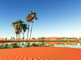 afrikansk oas foto