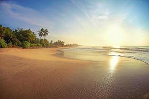 öde tropisk strand