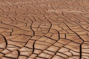 sprucken jordtork - terreno agrietado por sequia foto