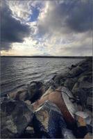 avfallsfat på stranden foto