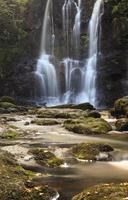 skog vattenfall foto